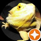 Reprobate Reptiles Avatar